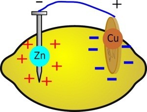 Lemon Battery Diagram