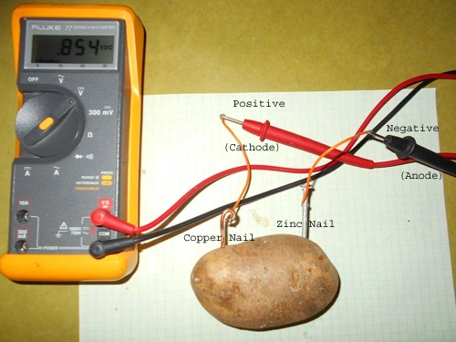 potato battery science project The potato battery is a classic but did you know that you can also make a battery out of a penny and lemon in fact, there are a bunch of household items that can be made into batteries in this project, we test a penny and lemon to see how many volts it can produce pinterest email print ages: 8 - 10 est time: 30 mins.